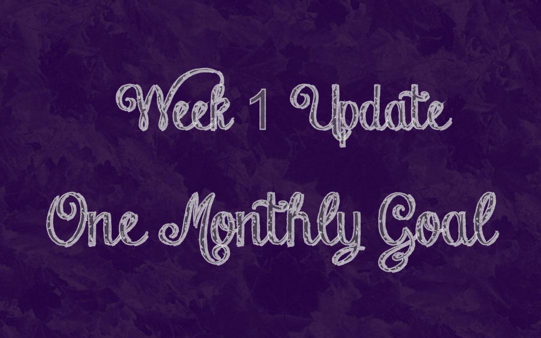 Week One Update!